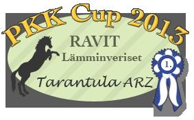 banPKK-Cup 2013 palkinto